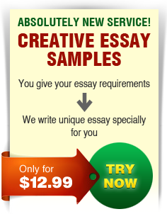 offered essay sample papers